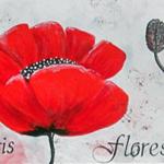 Papaveris Flores